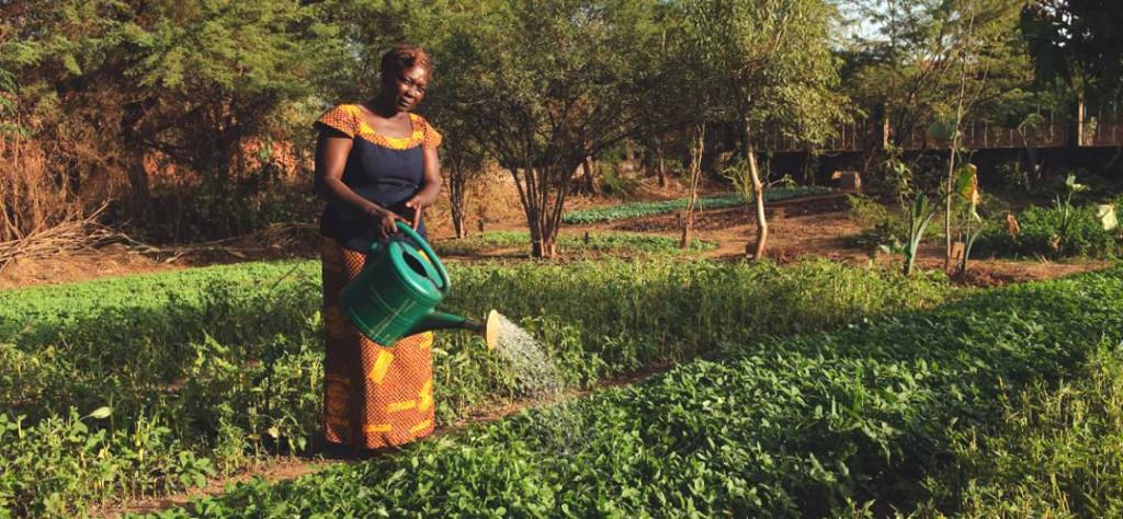 10000-orti-Africa-Slowfood